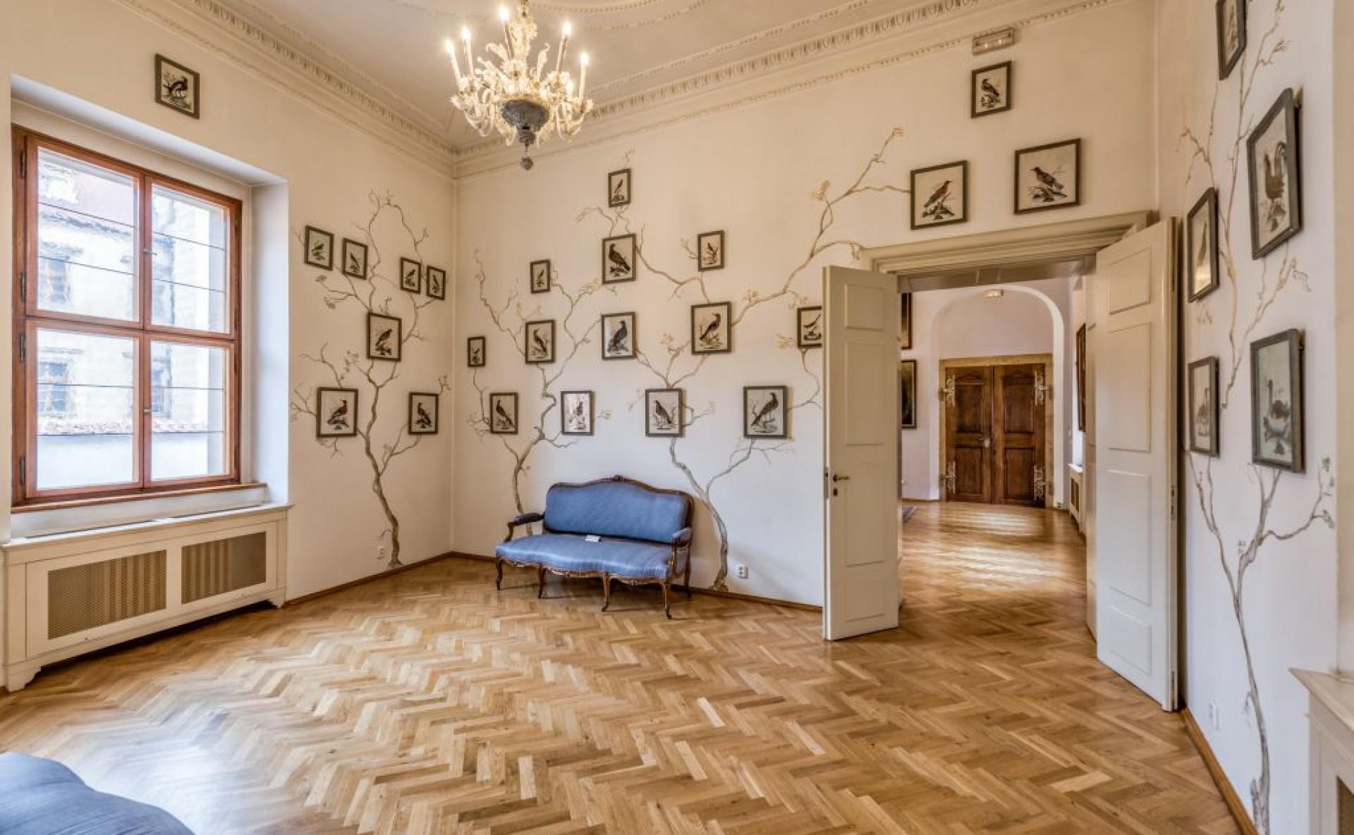 Prague Castle for rent